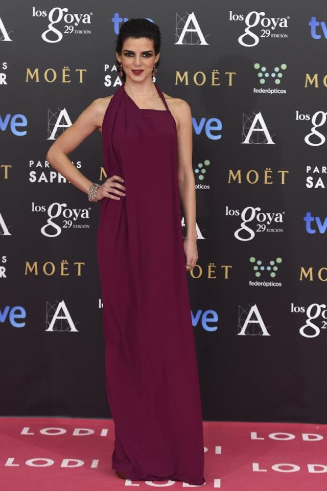 celebrities_alfombra_roja_rosa_premios_goya_2015_cine__136712589_800x