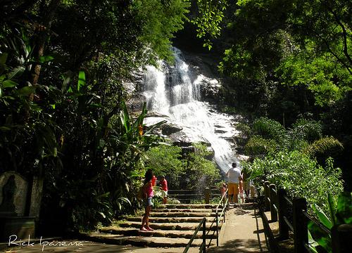 floresta-da-tijuca-021